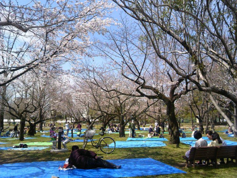 駿府城公園13