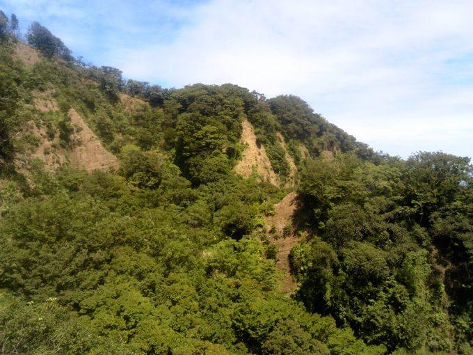 静岡 日本平ロープウェイ ロープウェイからの眺め2