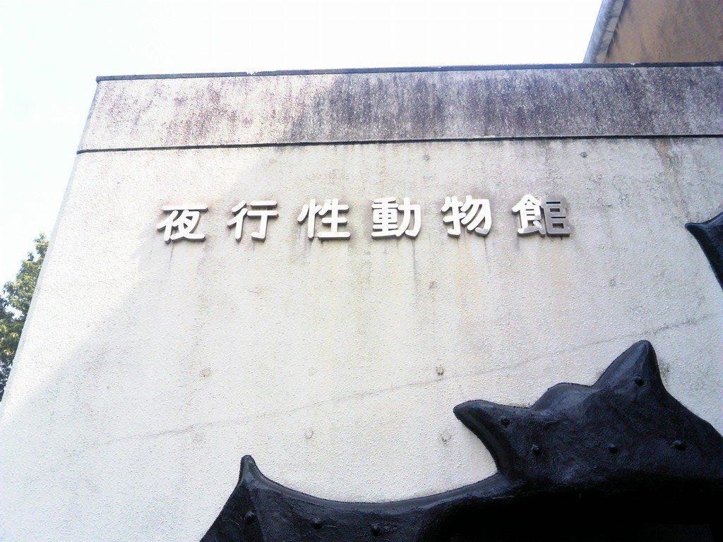 日本平動物園 夜行性動物館