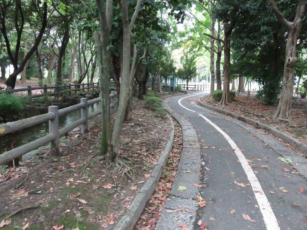 大江川緑地 サイクリングロード