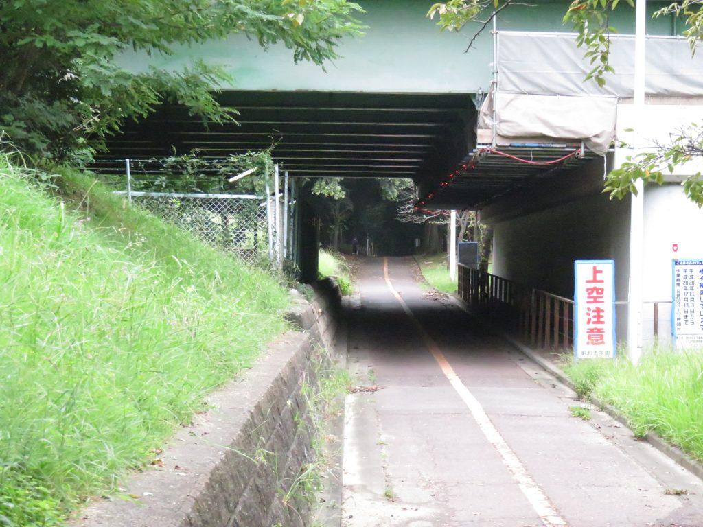 大江川緑地 サイクリングロード2