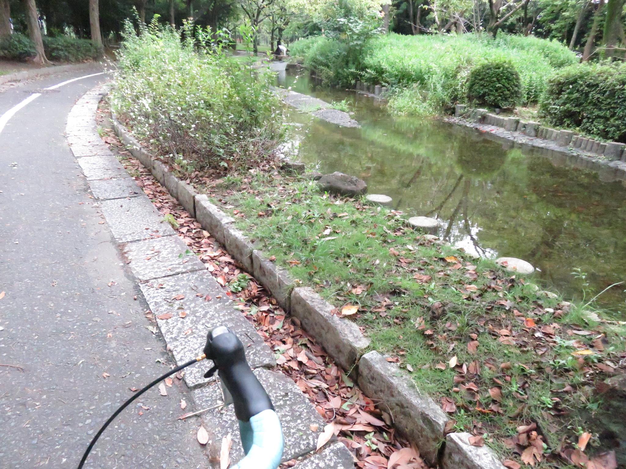 大江川緑地 サイクリングロード3