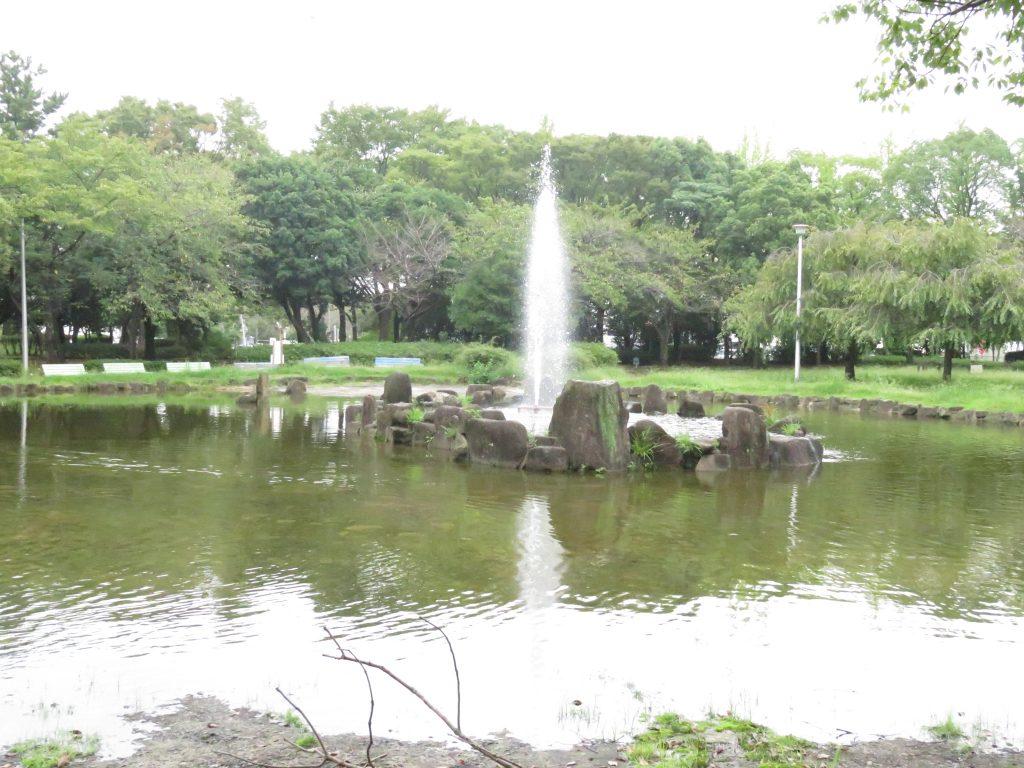 大江川緑地 サイクリングロード7