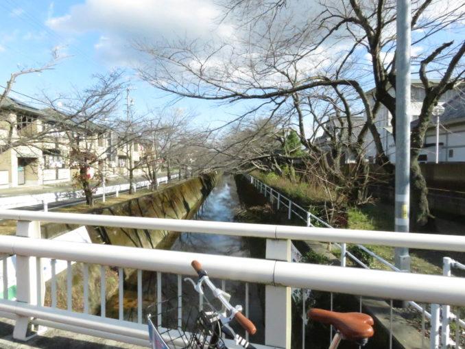 静岡 サイクリング